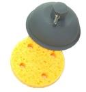 6cm Vac Electrode & Sponge